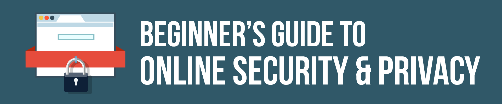 Beginner's Guide to Online Security and Privacy